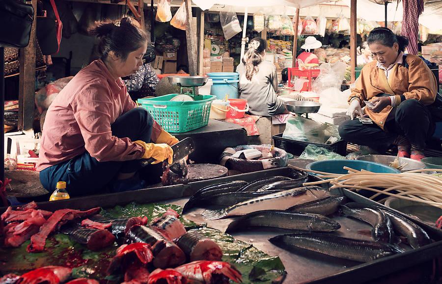 Wir haben einen Kurs gebucht in der Cambodia Cooking Class, dem Vernehmen nach der besten Khmer-Kochschule in Phnom Penh. Hier sind unsere Erfahrungen